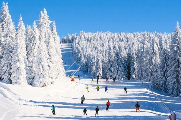 hospitality-radios-wicom ski-hills